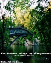 The broken wings of forgiveness - Seven beacons of hope ebook by Richard Shekari