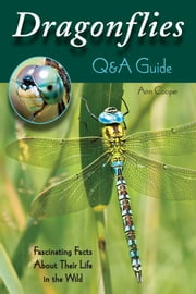 Dragonflies: Q & A Guide - Fascinating Facts About Their Life in the Wild ebook by Ann Cooper