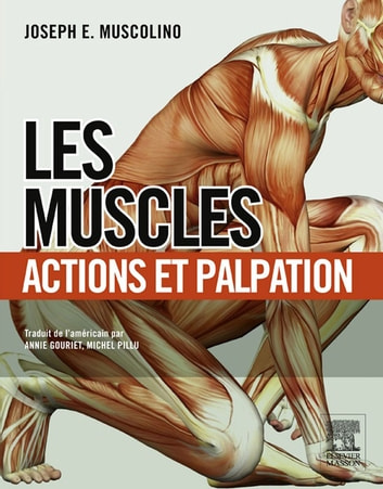 Les muscles : actions et palpation ebook by Annie Gouriet,Joseph E. Muscolino,Michel Pillu,John Scott & Co