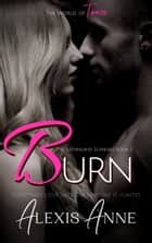 Burn - A World of Tease Novel ebook by Alexis Anne