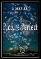 Picture Perfect ebook by