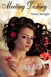 Meeting Destiny ebook by Nancy Straight