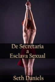 De Secretaria a Esclava Sexual ebook by Seth Daniels