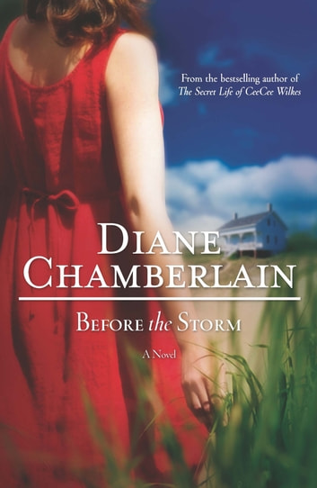 Before the Storm ebook by Diane Chamberlain