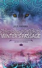 Winter's Passage (The Iron Fey) ebook by Julie Kagawa