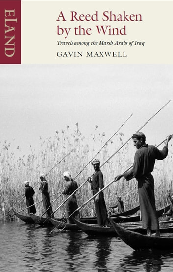 A Reed Shaken by the Wind - Travels among the Marsh Arabs of Iraq ebook by Gavin Maxwell