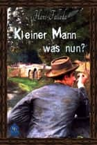 Kleiner Mann - was nun? ebook by Hans Fallada