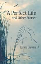 Perfect Life and Other Stories ebook by Elaine Burnes