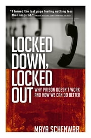 Locked Down, Locked Out - Why Prison Doesn't Work and How We Can Do Better ebook by Maya Schenwar