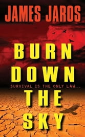 Burn Down the Sky ebook by James Jaros