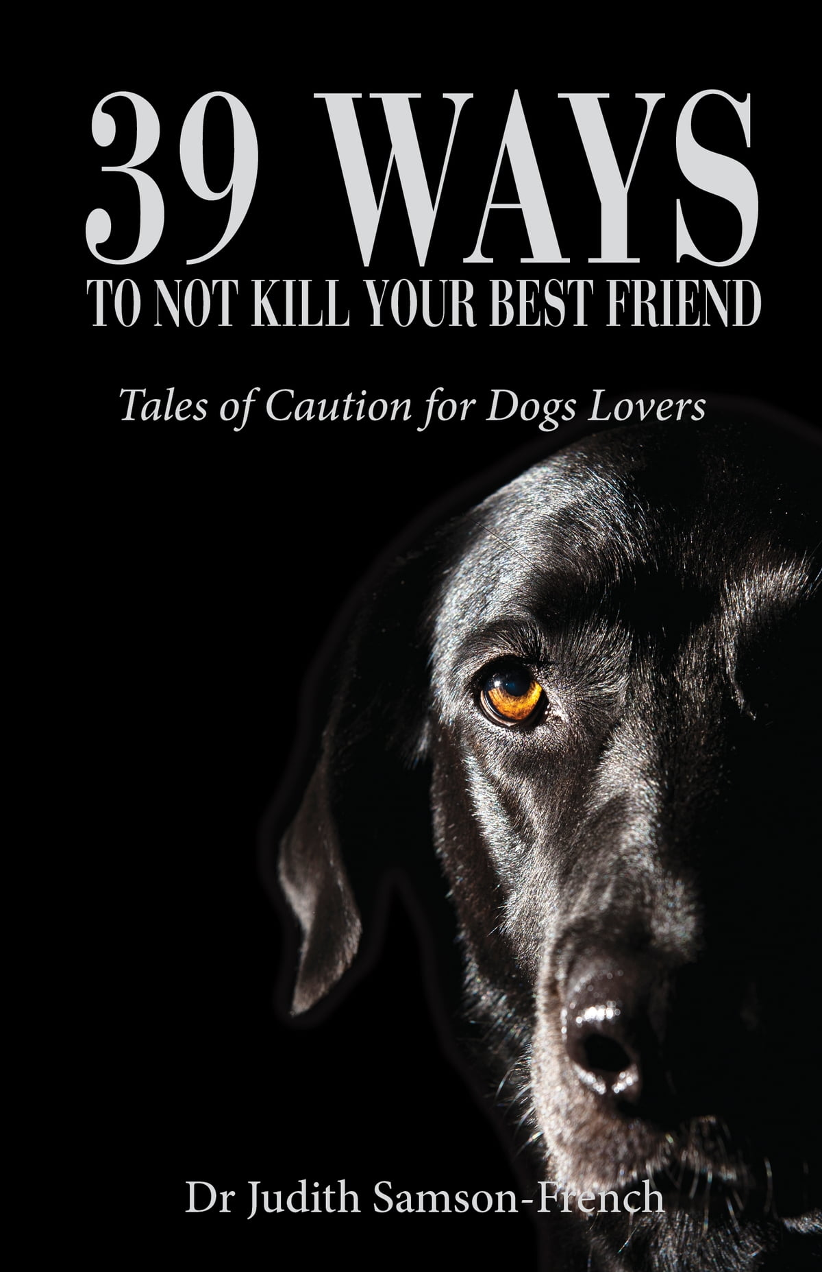 39 Ways Not to Kill Your Best Friend ebook by Judith Samson-French -  Rakuten Kobo