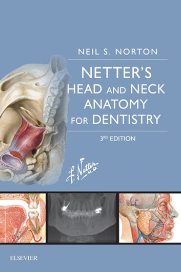 Netters Head And Neck Anatomy For Dentistry E Book Ebook By Neil S Norton