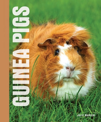 Your Guinea Pig eBook by Julie Mancini