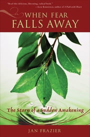 When Fear Falls Away - The Story of a Sudden Awakening ebook by Jan Frazier, Barbi Schulick