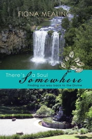 There's a Soul Somewhere - Finding our way back to the Divine ebook by Fiona Mealing