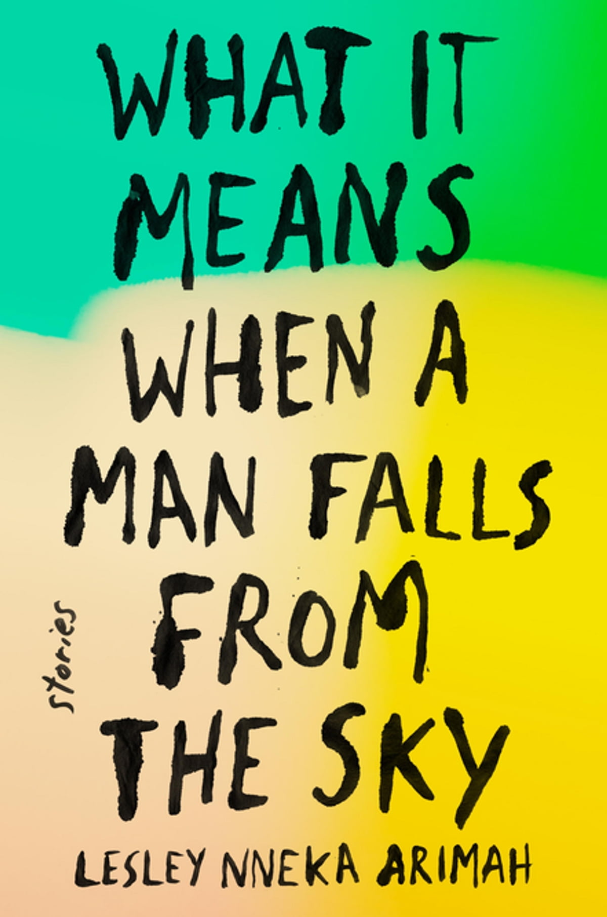 What It Means When A Man Falls From The Sky  Stories Ebook By Lesley Nneka