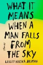What It Means When a Man Falls from the Sky ebook by Stories