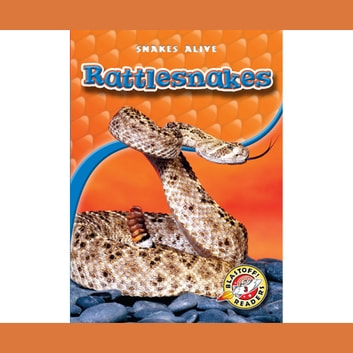 Rattlesnakes audiobook by Colleen Sexton