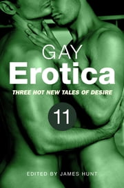 Gay Erotica, Volume 11 - Three great new stories ebook by James Hunt