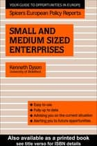Small and Medium Sized Enterprises ebook by Kenneth Dyson