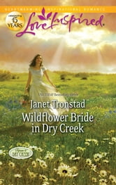 Wildflower Bride in Dry Creek ebook by Janet Tronstad