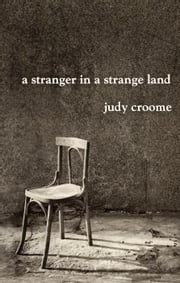 A Stranger in a Strange Land ebook by Judy Croome