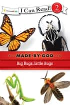 Big Bugs, Little Bugs eBook by Zondervan