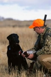 Training a Hunting Dog For Beginners ebook by Rodney Peele