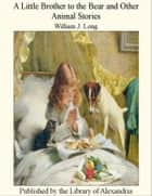 A Little brother to the Bear and Other Animal Stories eBook by William J. Long
