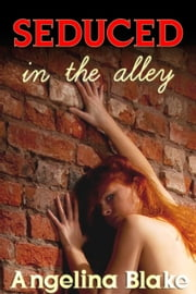 Seduced in the Alley ebook by Angelina Blake