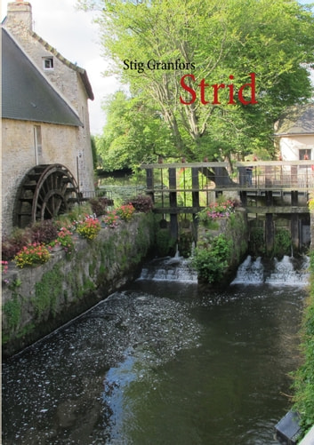Strid ebook by Stig Granfors
