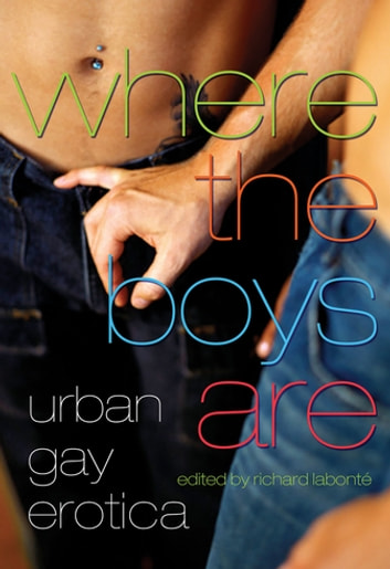 Where the Boys Are - Urban Gay Erotica ebook by