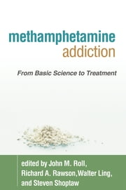 Methamphetamine Addiction - From Basic Science to Treatment ebook by