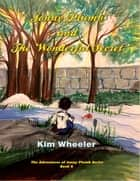 Jonny Plumb and The Wonderful Secret ebook by Kim Wheeler