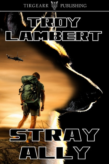 Stray Ally ebook by Troy Lambert