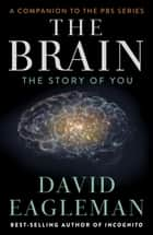 The Brain ebook by David Eagleman