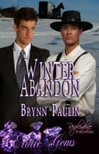 Winter Abandon ebook by Brynn Paulin
