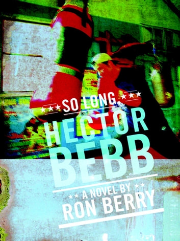 So Long, Hector Bebb ebook by Ron Berry
