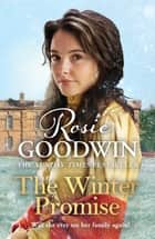 The Winter Promise - From the Sunday Times bestselling author ebook by Rosie Goodwin