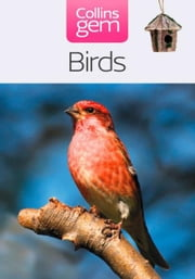 Birds (Collins Gem) ebook by Jim Flegg