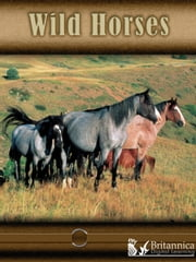 Wild Horses ebook by Lynn Stone,Britannica Digital Learning