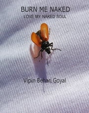 Burn me naked - love my naked soul ebook by Vipin Behari Goyal