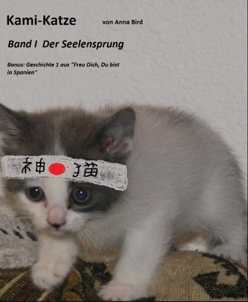 Kami Katze: Band 1 Seelensprung ebook by Anna Bird
