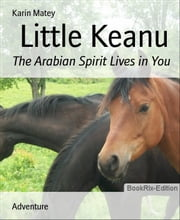 Little Keanu - The Arabian Spirit Lives in You ebook by Karin Matey