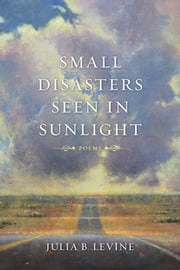 Small Disasters Seen in Sunlight - Poems ebook by Julia B. Levine