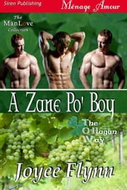 A Zane Po' Boy ebook by Flynn, Joyee