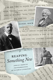 Reaping Something New - African American Transformations of Victorian Literature ebook by Daniel Hack