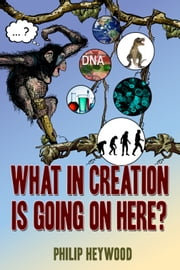 What In Creation Is Going On Here? ebook by Philip Bruce Heywood