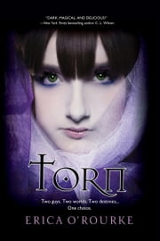 Torn ebook by Erica O'Rourke