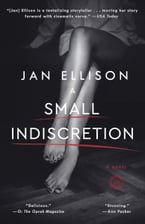 A Small Indiscretion, A Novel